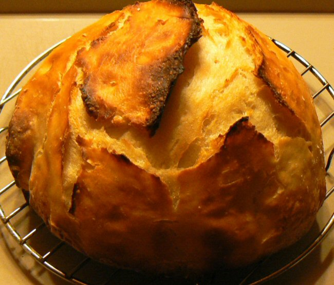 Name:  no_kneed_whey_bread_P1100005.JPG Views: 75 Size:  129.8 KB