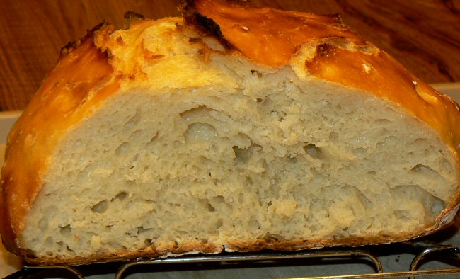 Name:  no_kneed_whey_bread_sliced_P1100012.JPG Views: 72 Size:  109.7 KB
