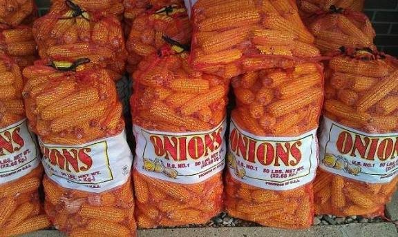 Name:  Onions.jpg