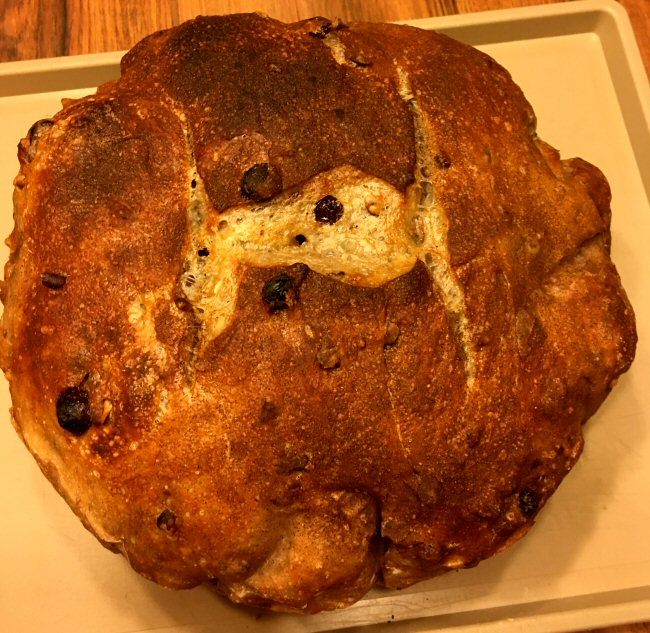 Name:  pecan_raisin_bread_cooked_051219_IMG_5819.JPG Views: 260 Size:  127.0 KB