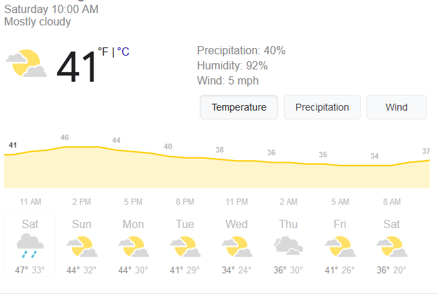 Screenshot_2021-01-16 weather - Google Search.png