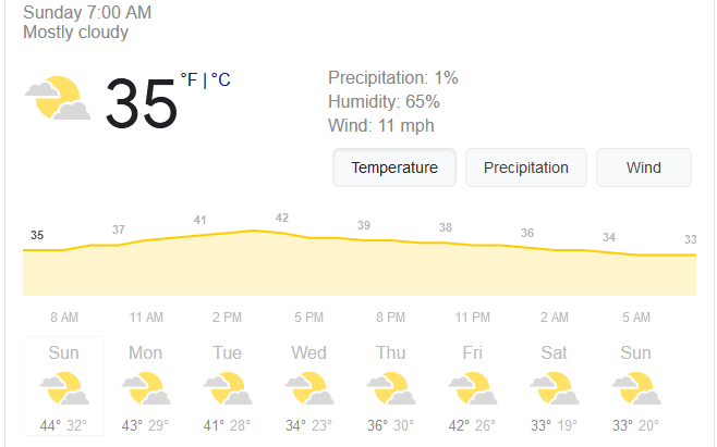 Screenshot_2021-01-17 weather - Google Search.png