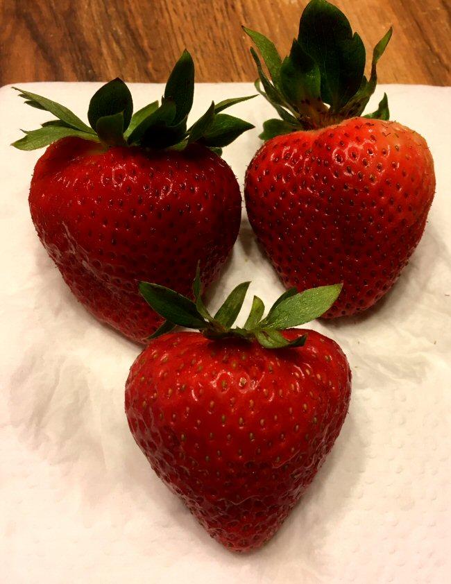 Name:  strawberries_061119_IMG_5883.JPG Views: 67 Size:  107.0 KB