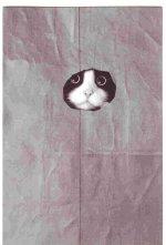 cats 013.jpg