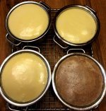 mini_cheesecake_081119_1_IMG_6092.JPG